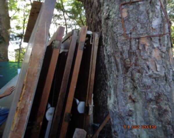 06 portas de madeira com medidas diversas